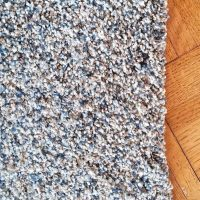 Wall to Wall carpet  < 1 year old:  Style:  Shaw (Sense of reflection) Color: serenity