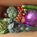 Weekly CSA Farmshare - Lloyd Craft Farms - $25 - $30 Weekly